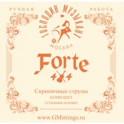 VN327 FORTE4/4 Комплект струн для скрипки, Господин Музыкант