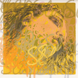 Evah Pirazzi 445090 Slap Комплект струн для контрабаса размером 3/4, синтетика, Pirastro
