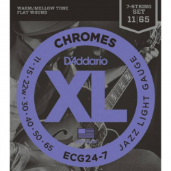 D'ADDARIO ECG24 -7 - Струны для электрогитары Даддарио