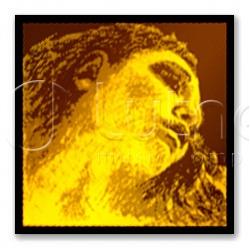 415091 Evah Gold Violin Комплект струн для скрипки (синтетика)